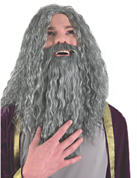 Old Wizard Beard And Wig Set Grey