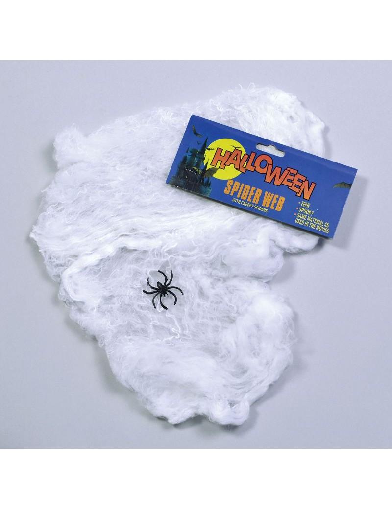 Spider Web Decoration Wool Bristol Novelty HI028