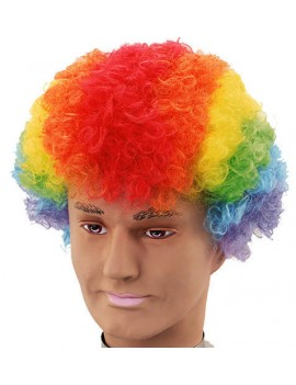 Afro Clown Wig Rainbow