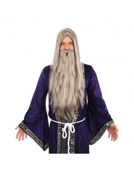 Wizard Wig And Beard Long Grey