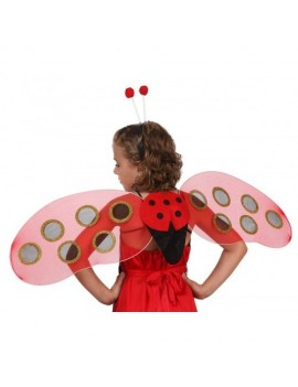 Ladybird Wings And Antennae Set
