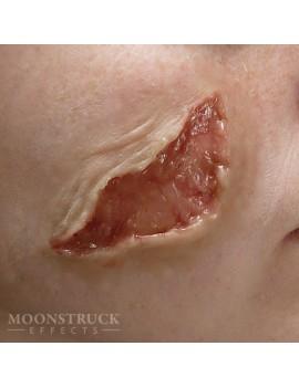 Moonstruck Effects Gelatin Zombie Wound #1