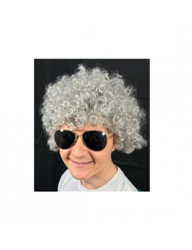 Afro Wig Grey ST7285