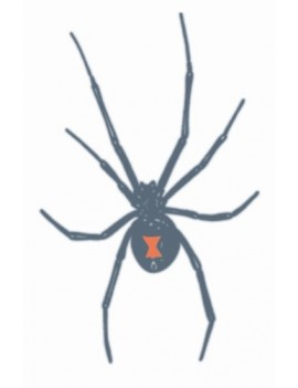 Prison Black Widow Spider Temporary Tattoo Tinsley Transfers PR-308