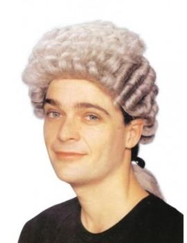 Barrister court grey pigtail wig Bristol Novelty BW172