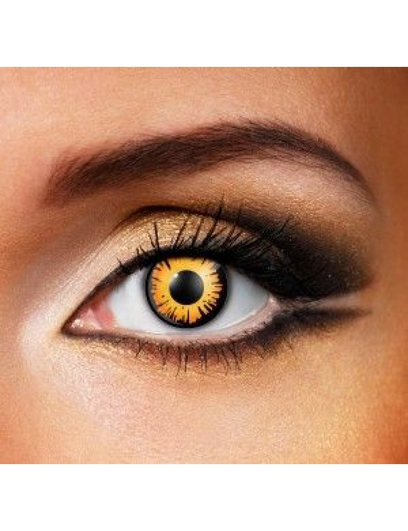 Bella Twilight Eye Accessories Daily