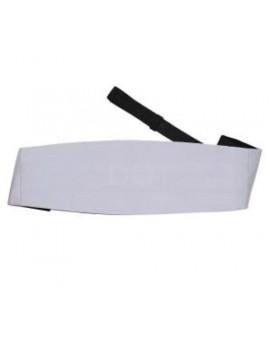 Silver satin polyester cummerbund bow tie DQT