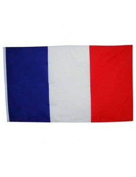 French tricolor polyester large european flag 5 x 3  party room decoration Bristol Novelty PG015