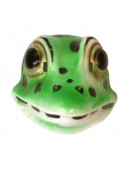 Frog plastic mask Pams Of Gainsborough 19602