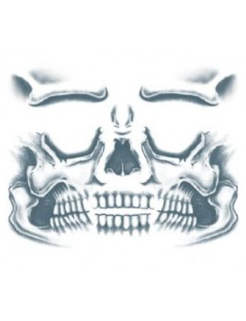 Face Skull temporary tattoo Tinsley Transfers CT-411