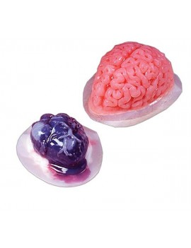 Heart And Brain Jelly Moulds