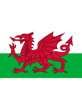 Welsh Flag E Apollo 6203