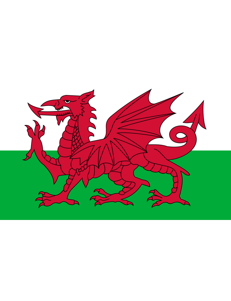 Welsh Dragon  polyester large British flag 5 x 3  party room decoration E Apollo 6203