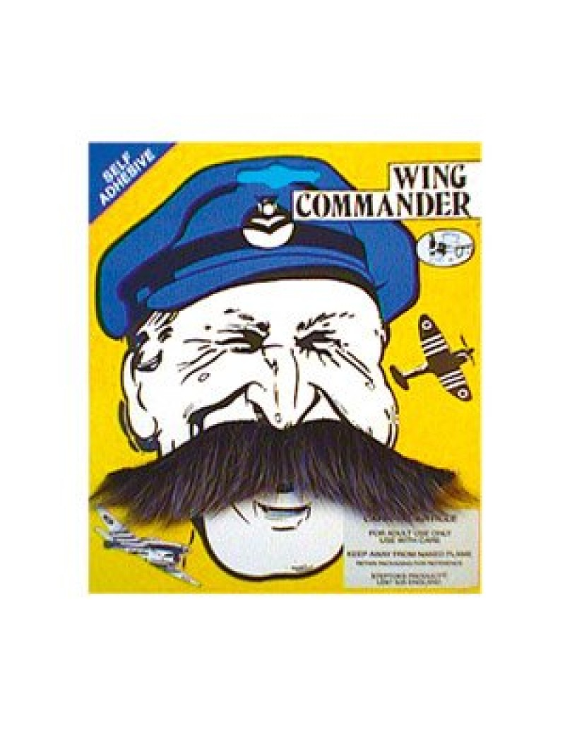 Wing commander stick on false self adhesive moustache grey Steptoes M11